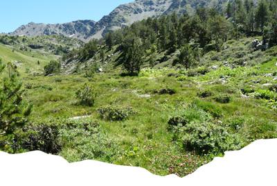 Paysage du Parc Natural Sorteny
