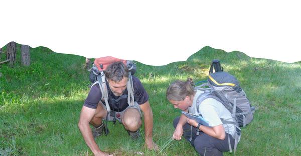 Binôme d'experts en observation botanique