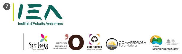 Logo de l'IEA et de ses partenaires associés